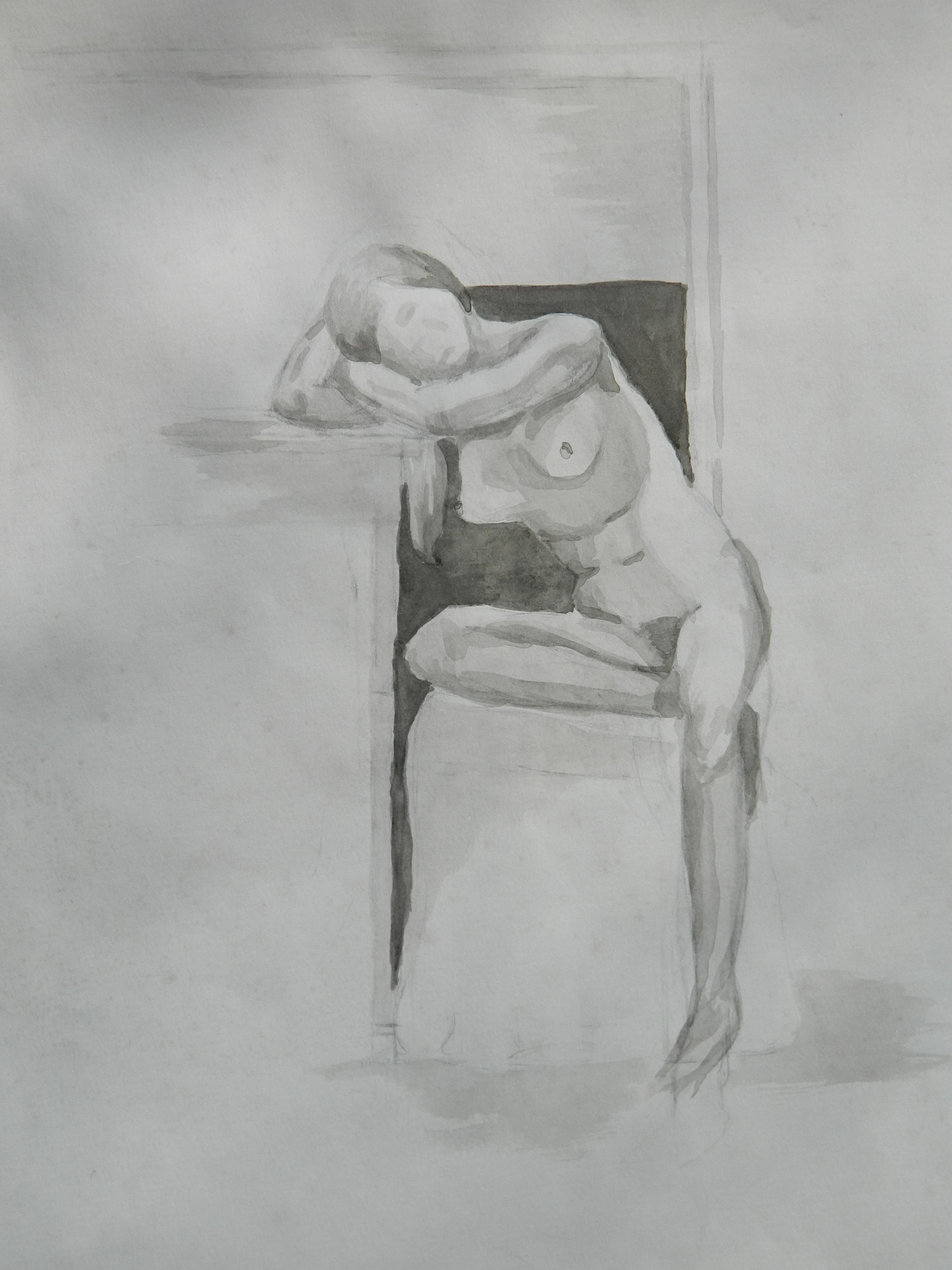 Anatomy penis human