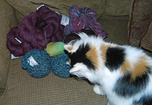 Moxie approves of the yarn.