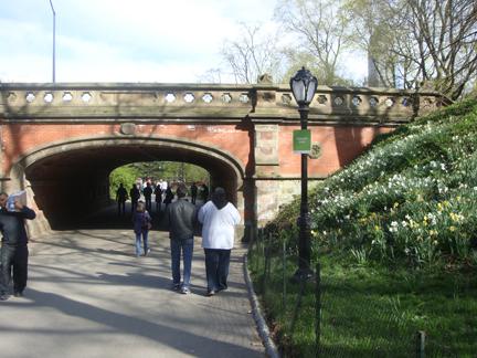 CP walk under arch