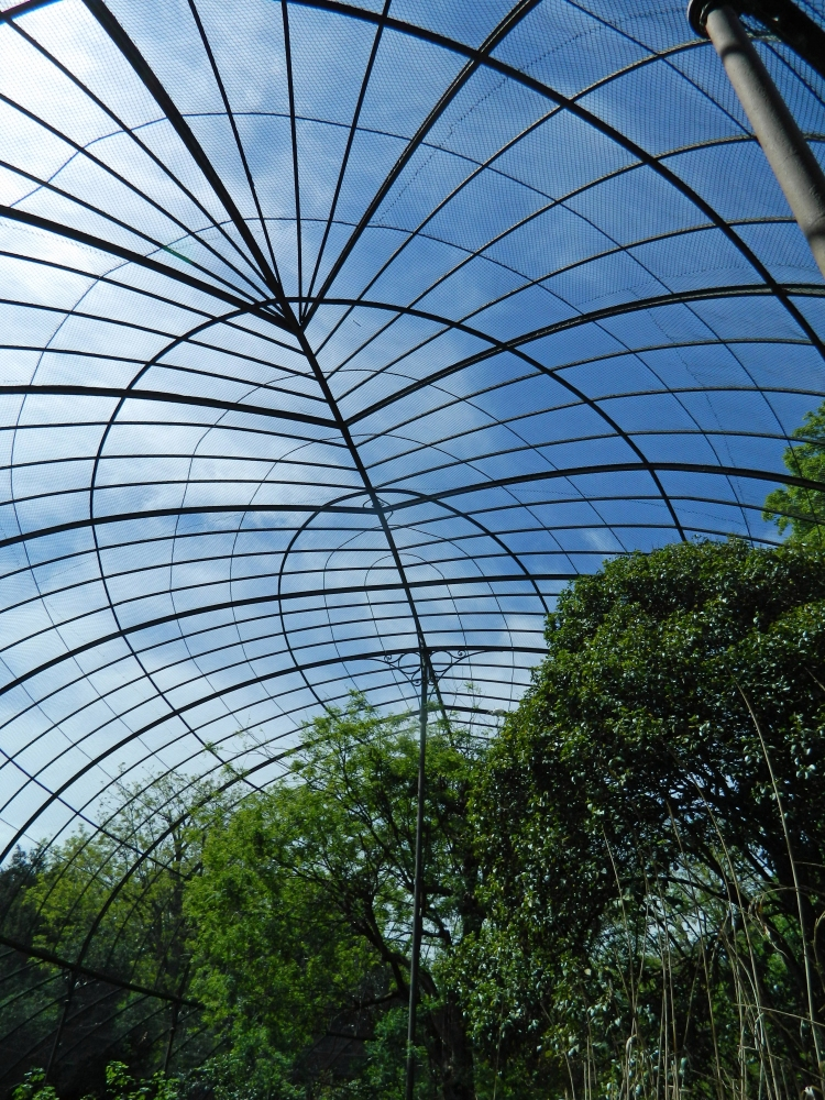 The Paris Zoo, go for the architecture (4/6)