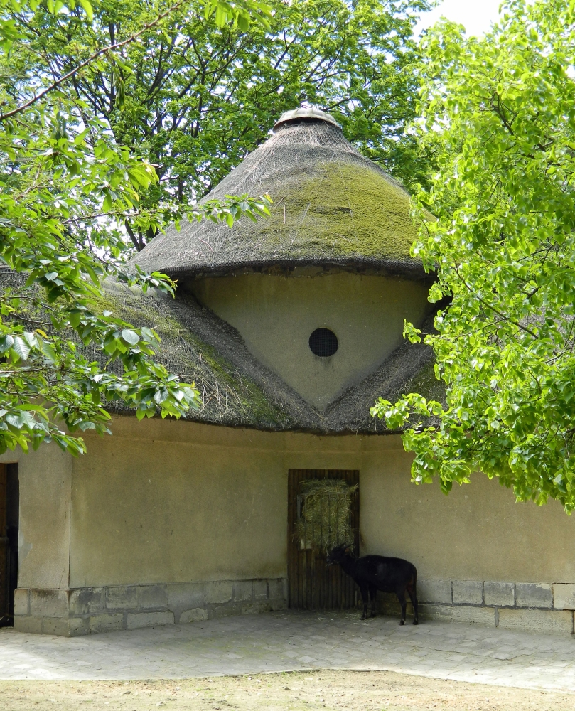 The Paris Zoo, go for the architecture (3/6)
