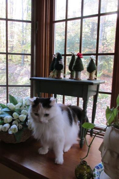 Moxie has no clue how one of these holiday trees fell over.  Felted projects are prized toys for the feline.