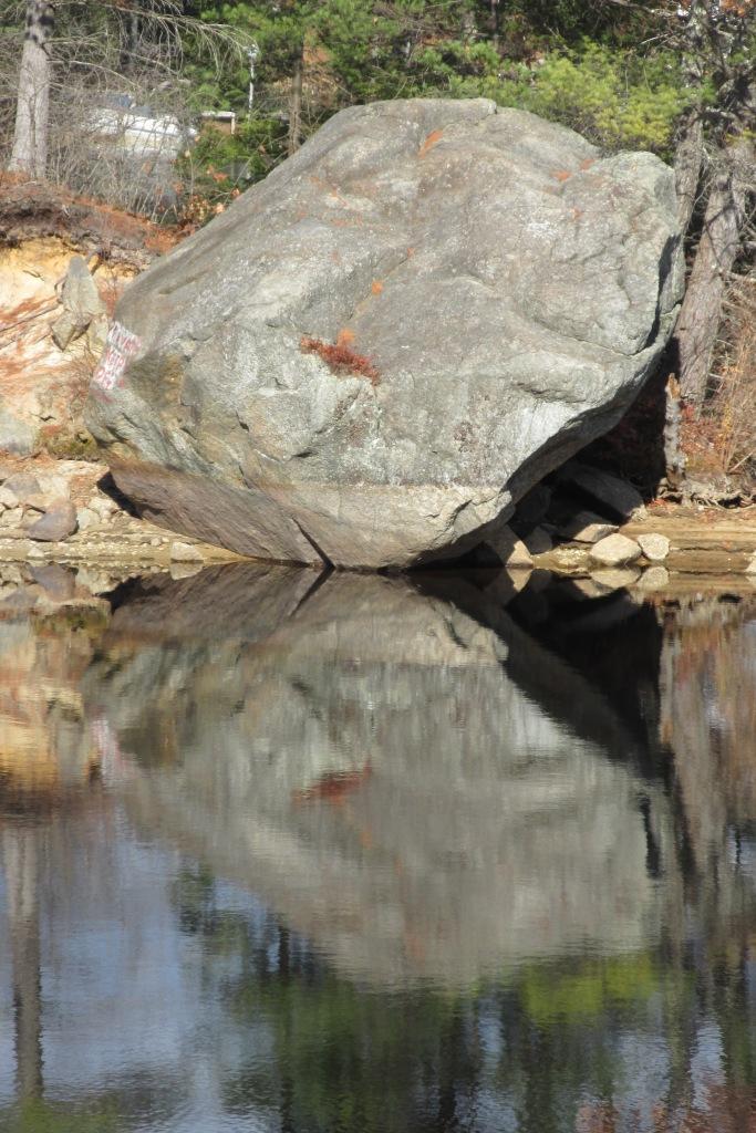 Whale head rock