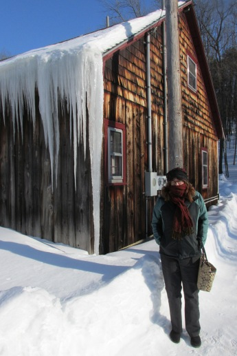 Icicles from roof to ground are not uncommon.  This building, a bookstore has buckets everywhere as there are many leaks.  When it warms up, the ice is under the shingles and drips inside.
