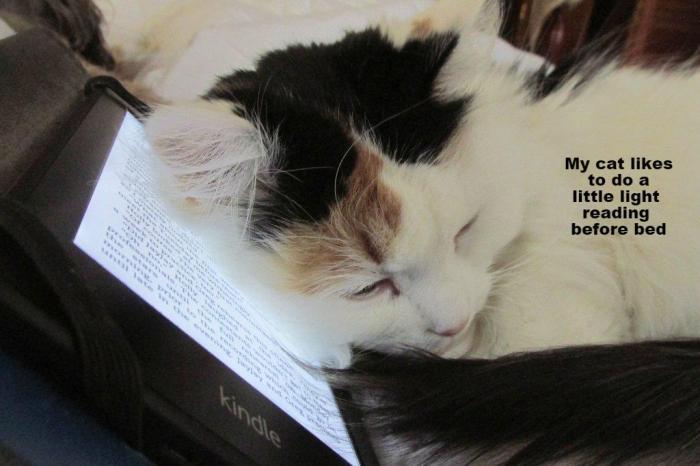 moxie reading.