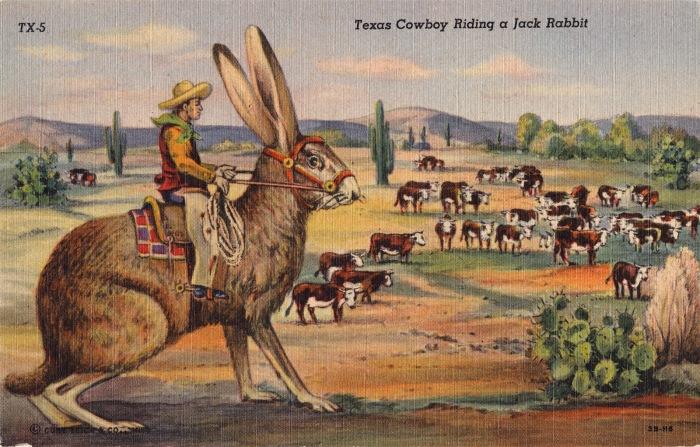 B00a1_TexasCowboyRidingJackrabbit